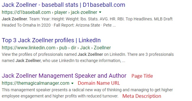 Display of speaker website Home Page Page Title, Domain Name URL and Meta Description in a Google search for SEO for professional speakers case study
